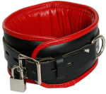 BNR3 - Padded Black-Red Collar