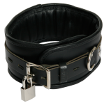 BNB1 - Padded Collar - Black