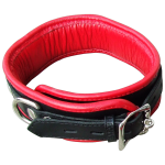 BN2 - Padded Collar